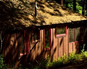 Red Framed Cabin In The Woods. Secluded cabin in the woods of Lake Creek Lodge near Sisters, Oregon