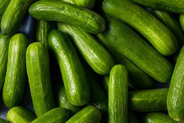 Raw Green Organic Mini Cocktail Cucumbers Wall mural