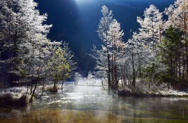 初冬の上高地・田代池