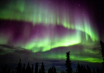 Foto op Aluminium Noorderlicht アラスカ フェアバンクスのオーロラ