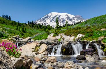 Mount Rainier Edith Creek
