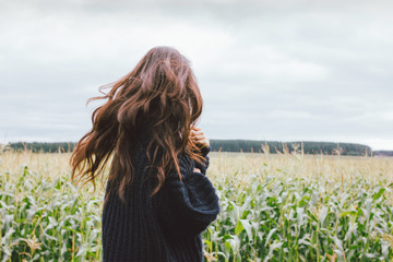 Beautiful carefree windy long hair girl in knitted sweater in the autumn corn field. Sensitivity to nature concept