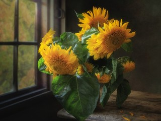 Still life with bouquet of sunflowers