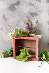 Bundles of fresh medicinal plants in a box on the table