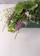 Armful of fresh medicinal plants in a box on the table