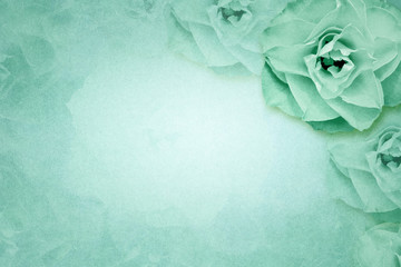 Rose flower on green paper background