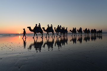 Foto op Aluminium Kameel Silhouette of tourists on camel ride Cable Beach Broome Kimberley Western Australia