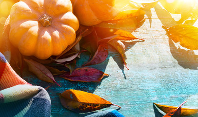 Fotomurales - Thanksgiving background with Pumpkins, autumn leaves and warm blanket on wooden table