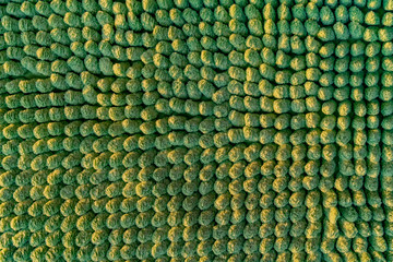 Green pile carpet texture