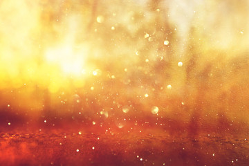 Abstract background of light burst among trees and glitter golden bokeh lights