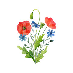 Watercolor bouquet of meadow flowers isolated on white background. Poppies and cornflowers. Handdrawn clipart for greeting cards and invitations.