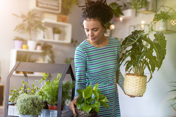 Young woman taking care of her potted plants at home