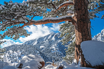 Winter scenery in Boulder, Colorado
