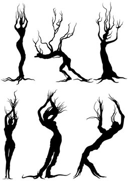 Humanoid trees silhouettes set/ Illustration fantasy bizarre trees silhouettes like people