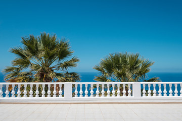 ocean view terrace with blue sky and palm tree background - Wall mural