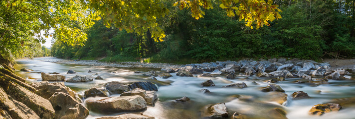 Poster Forest river Natur Panorama am Fluss im Wald