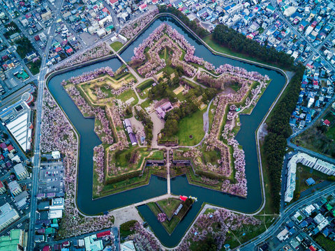Arial Top view of Fort Goryokaku with cherry blossom, Build for protect city from enemy in  Star Shape. This place is a famous to visit in Hakodate, Hokkaido Japan