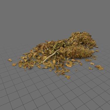 Pile of marijuana 1