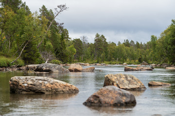 Fotomurales - Rocks in a shallow river in the forest of Jamtland, Sweden. Shallow D.O.F.