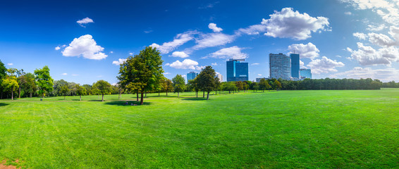 Panoramic landscape view of Pope's Meadow In Donaupark. Vienna. Austria. Summertime sunshine day, small cumulus clouds in the blue sky. People rest on the green grass in the trees shade.