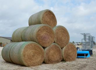 Freshly rolled hay
