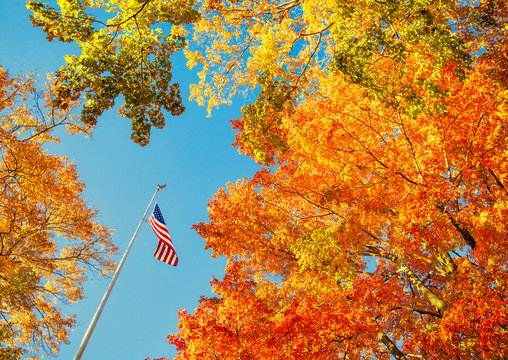 American flag waving in the wind with beautiful autumn foliage tree tops against blue sky at a park in New England