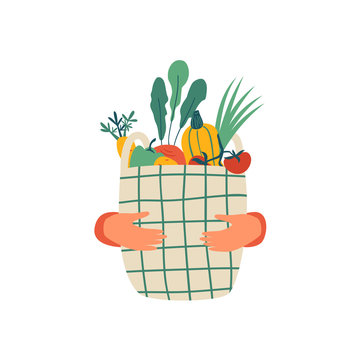 Human hands hold Eco basket full of vegetables isolated on white background. Eco-friendly shopper with fresh organic food from local market. Vector illustration in flat cartoon style.
