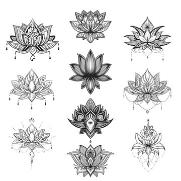 Filigree lotus flower set, vector handdrawn illustration