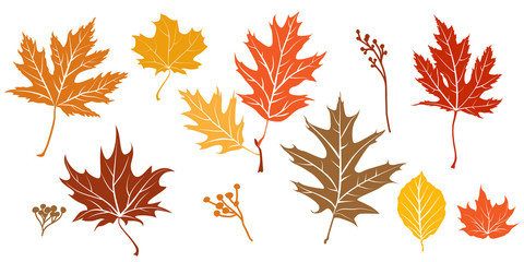 Wall Mural - Autumn leaves silhouette isolated.