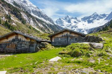 Fototapete - Almhütte in den herbstlichen Alpen im Zillertal