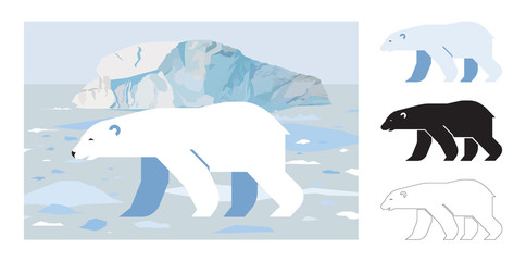 White bear icons. Flat vector illustration of white bear. Decorative cute illustration for children. Graphic design elements for print and web.