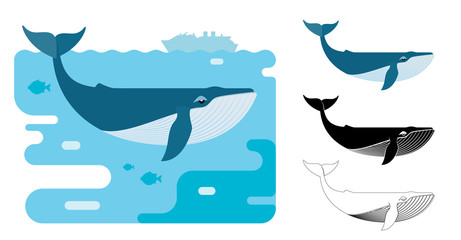 Blue whale icons. Flat vector illustration of blue whale. Decorative cute illustration for children. Graphic design elements for print and web.