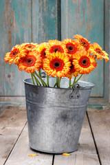 Fototapete - Bouquet of orange gerbera daisies in silver bucket on wooden table.