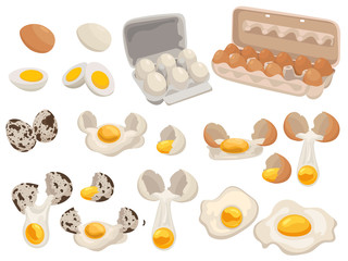 Set of farm eggs for food. Collection of chicken and quail eggs in the package. Vector illustration of food for shops.