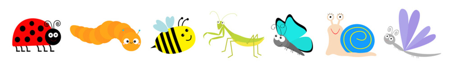 Cute cartoon insect set line. Mantis, ladybug, ladybird, bee, dragonfly, butterfly, caterpillar, snail. White background. Isolated.