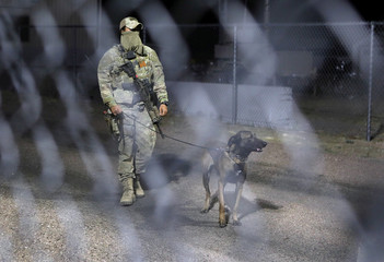 A military personnel member patrols with a dog within the gates to Area 51 as an influx of tourists responding to a call to 'storm' Area 51 is expected in Rachel