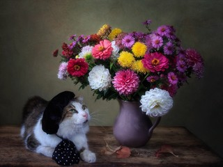 Still life with splendid bouquet of flowers and adorable cat