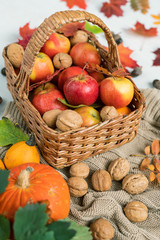 Basket with ripe apples, walnuts and red leaves standing on knitted sweater