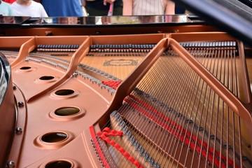 Interior y cuerdas de un piano de cola