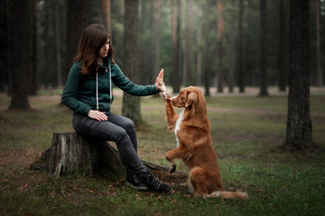 girl with a dog in the forest. Walking with a pet in nature, obedient, owner