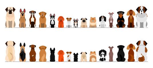 small and large dogs border border set, full length, front and back Fotobehang