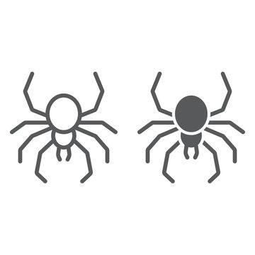 Spider line and glyph icon, spooky and animal, arachnid sign, vector graphics, a linear pattern on a white background.