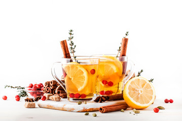 Photo sur Aluminium The Winter or autumn healing hot tea with lemon, cranberries, thyme and spices, white background, copy space, selective focus