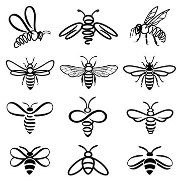 Honey bee set. Set of honey and bee labels for honey logo products. Isolated insect icon. Flying bee. Set of abstract modern graphic bees on white background. Flat style vector illustration.