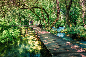 In de dag Weg in bos Wooden pathway in the deep green forest. Picturesque summer scene of Krka National Park, Croatia, Europe. Beautiful world of Mediterranean countries. Traveling concept background.