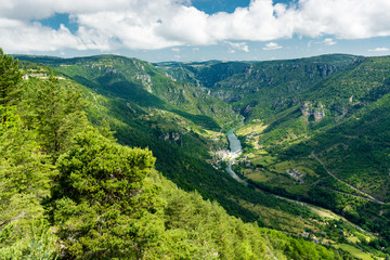 Foto op Canvas Groen blauw A view of the Gorges du Tarn, between Lozere and Aveyron
