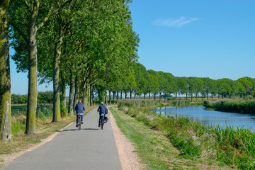 Two unrecognizable cyclists cycle in polder
