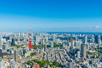 Fototapeten Tokio 東京の風景 Tokyo city skyline , Japan.