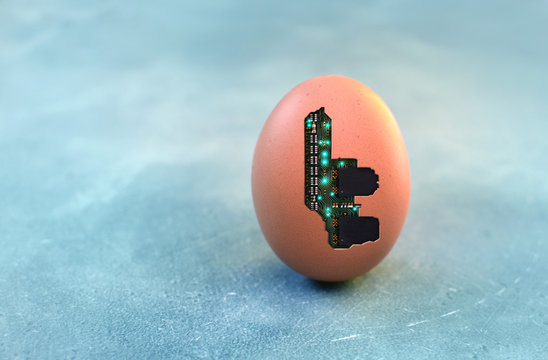 Cybernetic organism concept with semiconductor microchip inside the egg shell. Copy space.