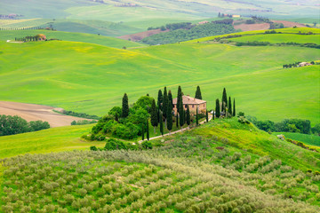 Fotomurales - Tuscany spring, Landscape, Italy, Europe